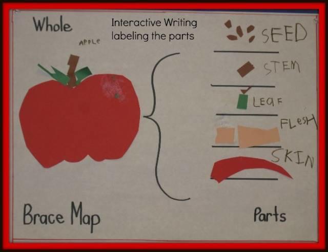 思维导图怎么用才能提高孩子的分析能力?