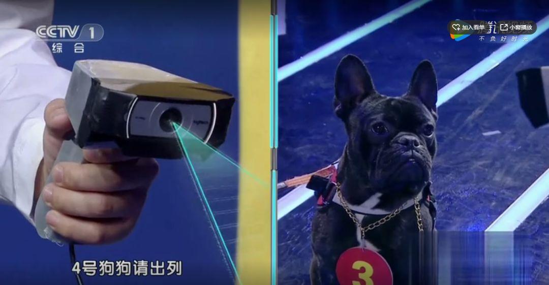 撒贝宁:未来取代我们的不是人工智能,而是下一代!