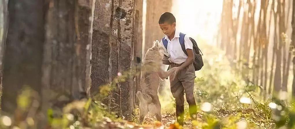 橙旭园发布《我们的教育观》,揭示儿童编程课程背后的教育理念